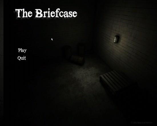 Briefcase_cover