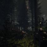Лютый Survival Horror The Forest ожидается в конце весны