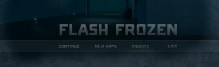 Flash Frozen Cover